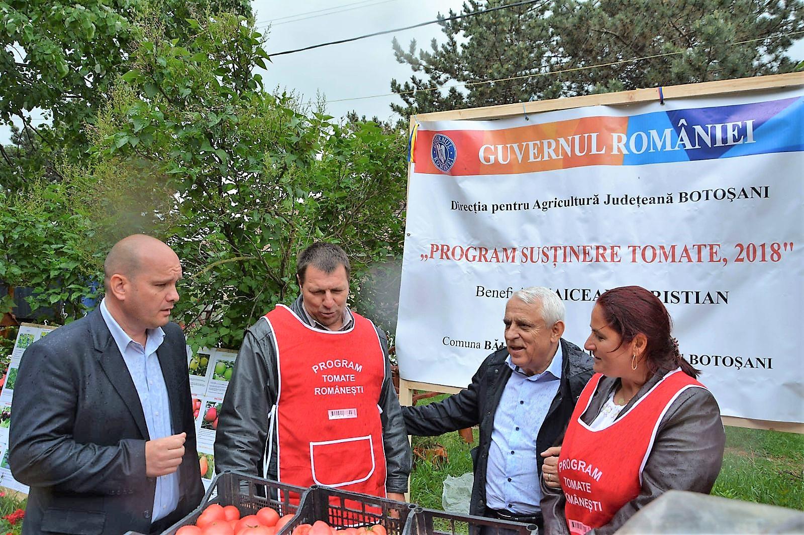 """3000 euro pe an pentru cultura de tomate !   """" PROGRAMUL TOMATE 2018,  din JUDEŢUL BOTOŞANI """""""