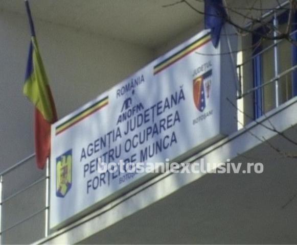 Sute de locuri de muncă la nivelul județului Botoșani
