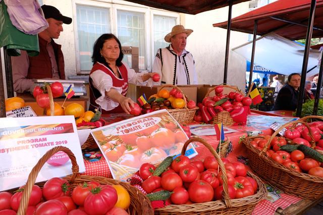 Au apărut pe piață botoșăneană primele roșii cultivate de producătorii autohtoni – VIDEO/FOTO