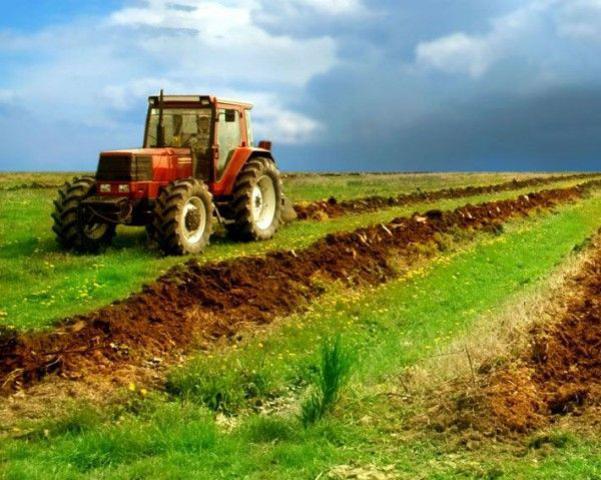 Liviu Dragnea anunță o nouă lege: limităm cumpărarea terenurilor de către străini