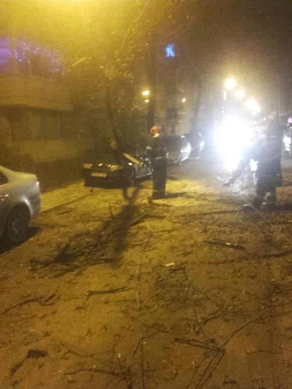 Autoturism distrus de un copac căzut pe o stradă din municipiu