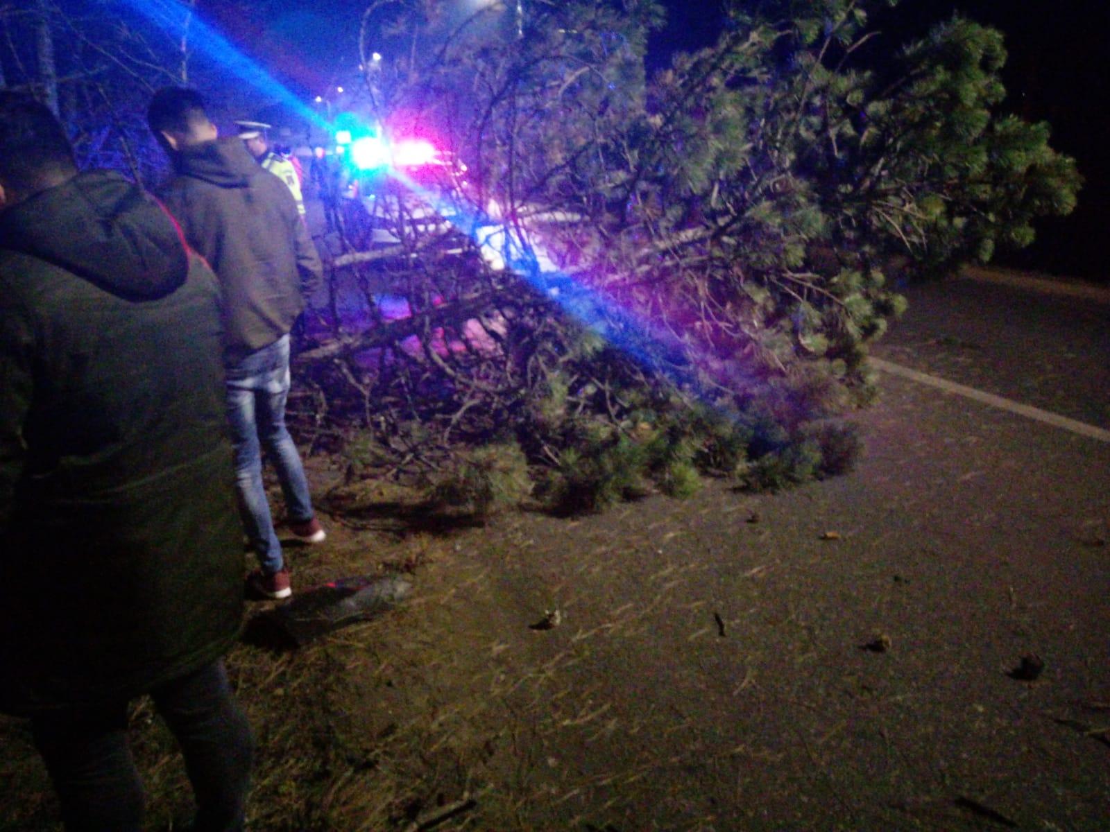 Accident cu victima la intrarea în Dorohoi