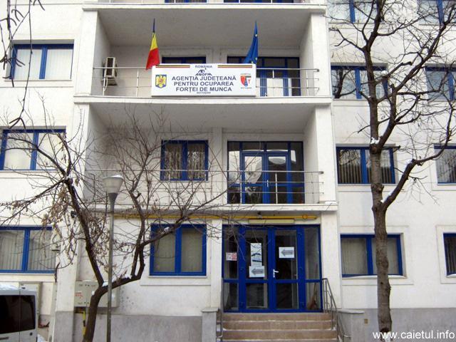 VEZI lista cu locurile de muncă vacanțe de la nivelul Județului Botoșani
