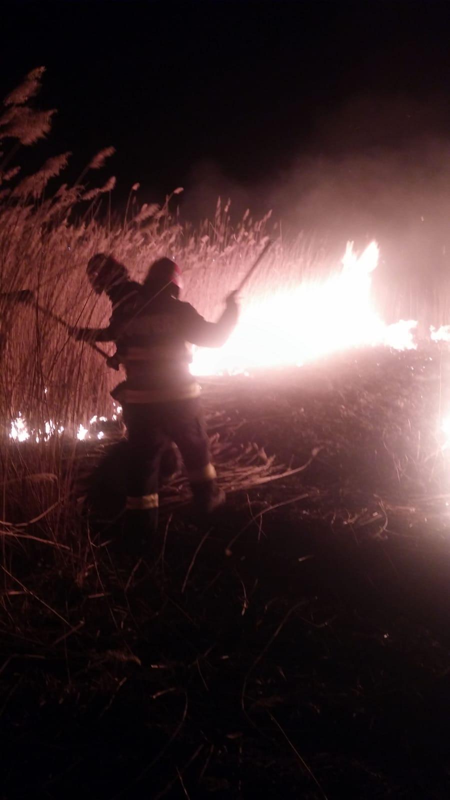 Incendiu de vegetație la Stăuceni
