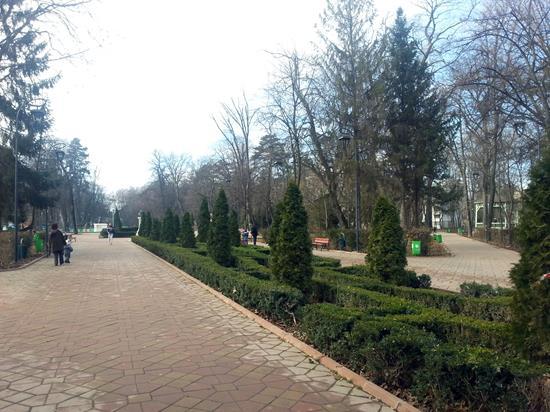COVID-19: Parcuri și toalete publice închise