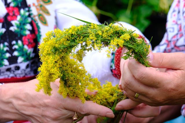 CALENDAR 24 iunie: Tradiții și superstiții de Sânziene