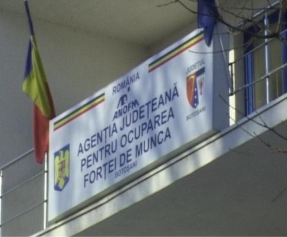 800 locuri de muncă în județul Botoșani prin intermediul AJOFM Botoșani