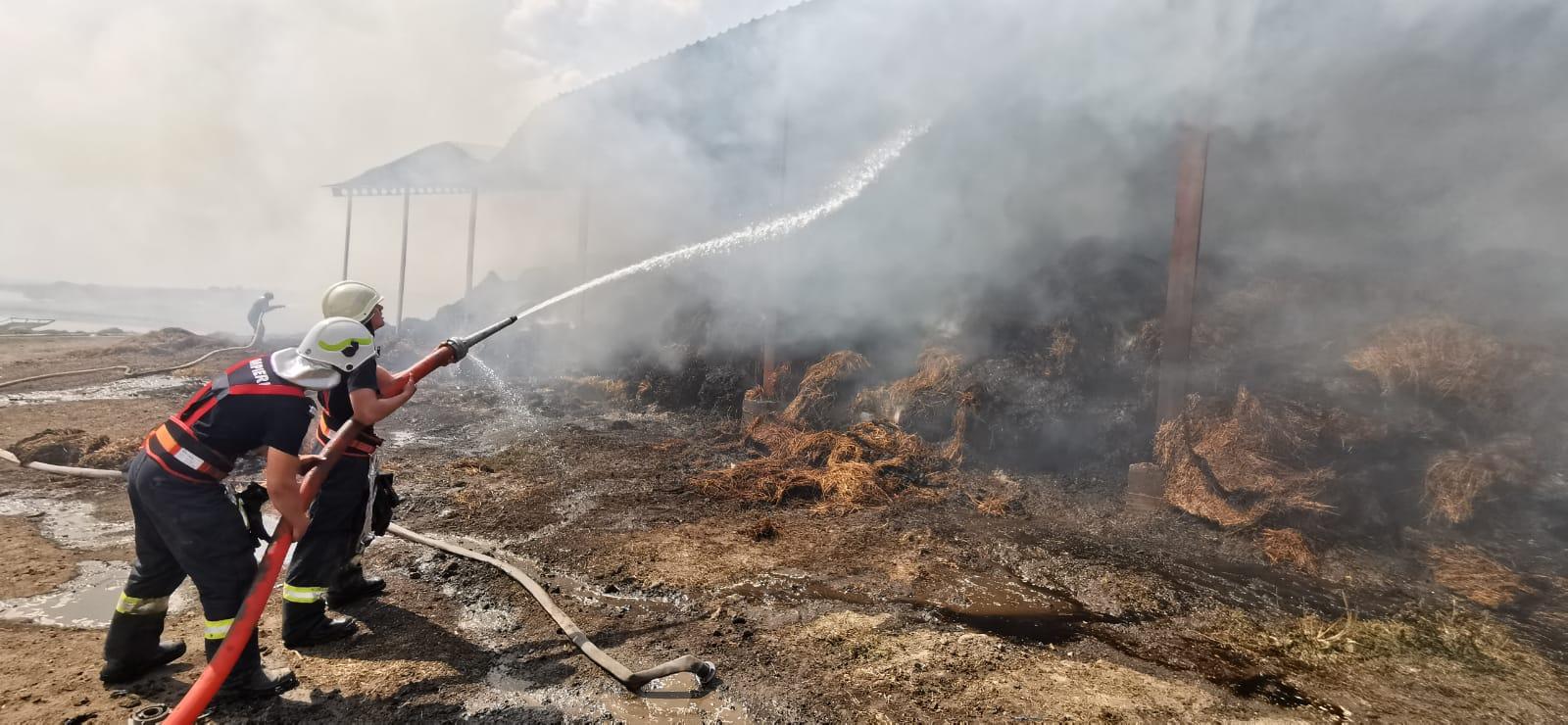 130 misiuni ale pompierilor botoșăneni, săptămâna trecută