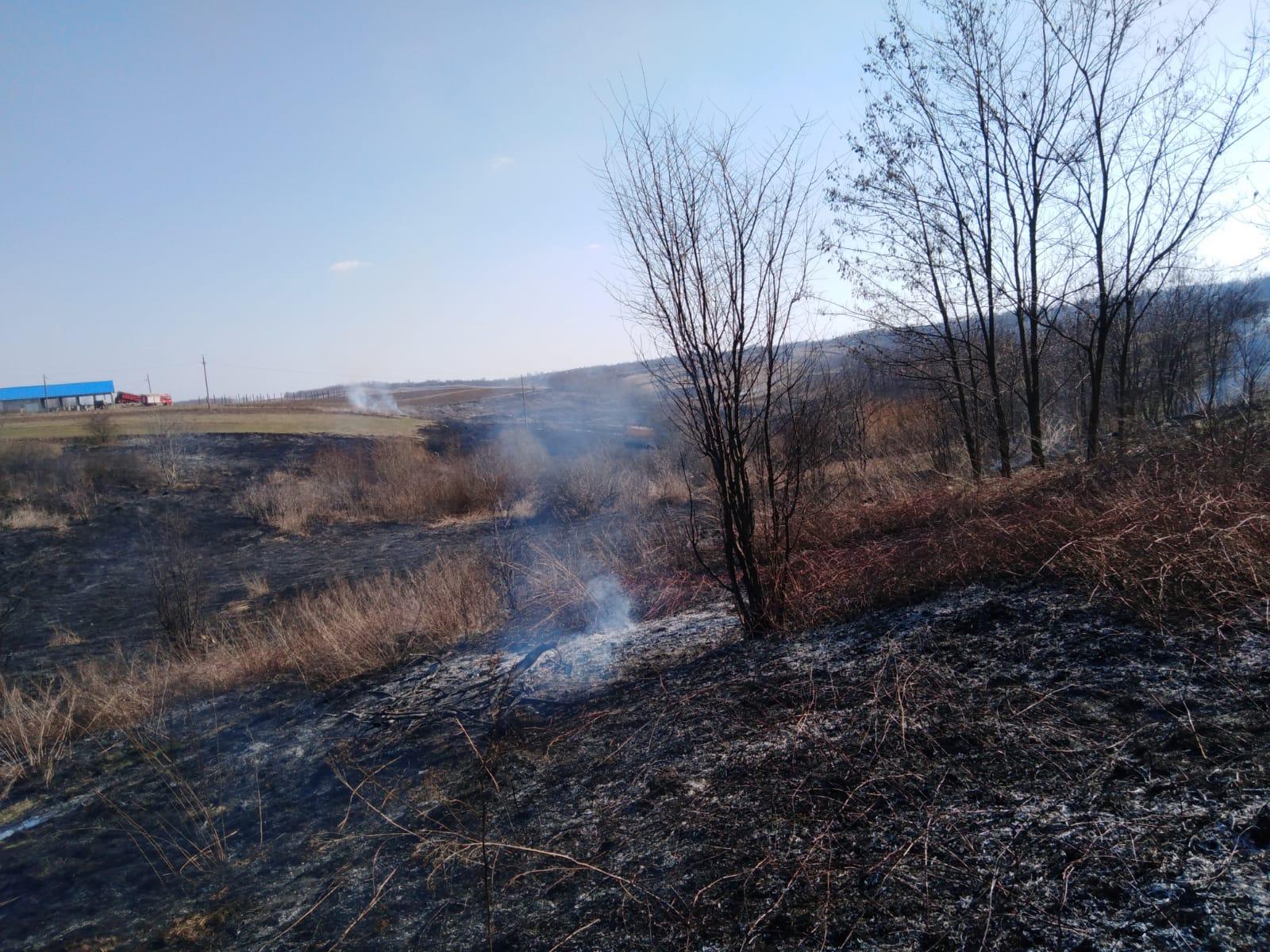 Un câmp cu vegetație uscată aprins de la o țigară aruncată la întâmplare