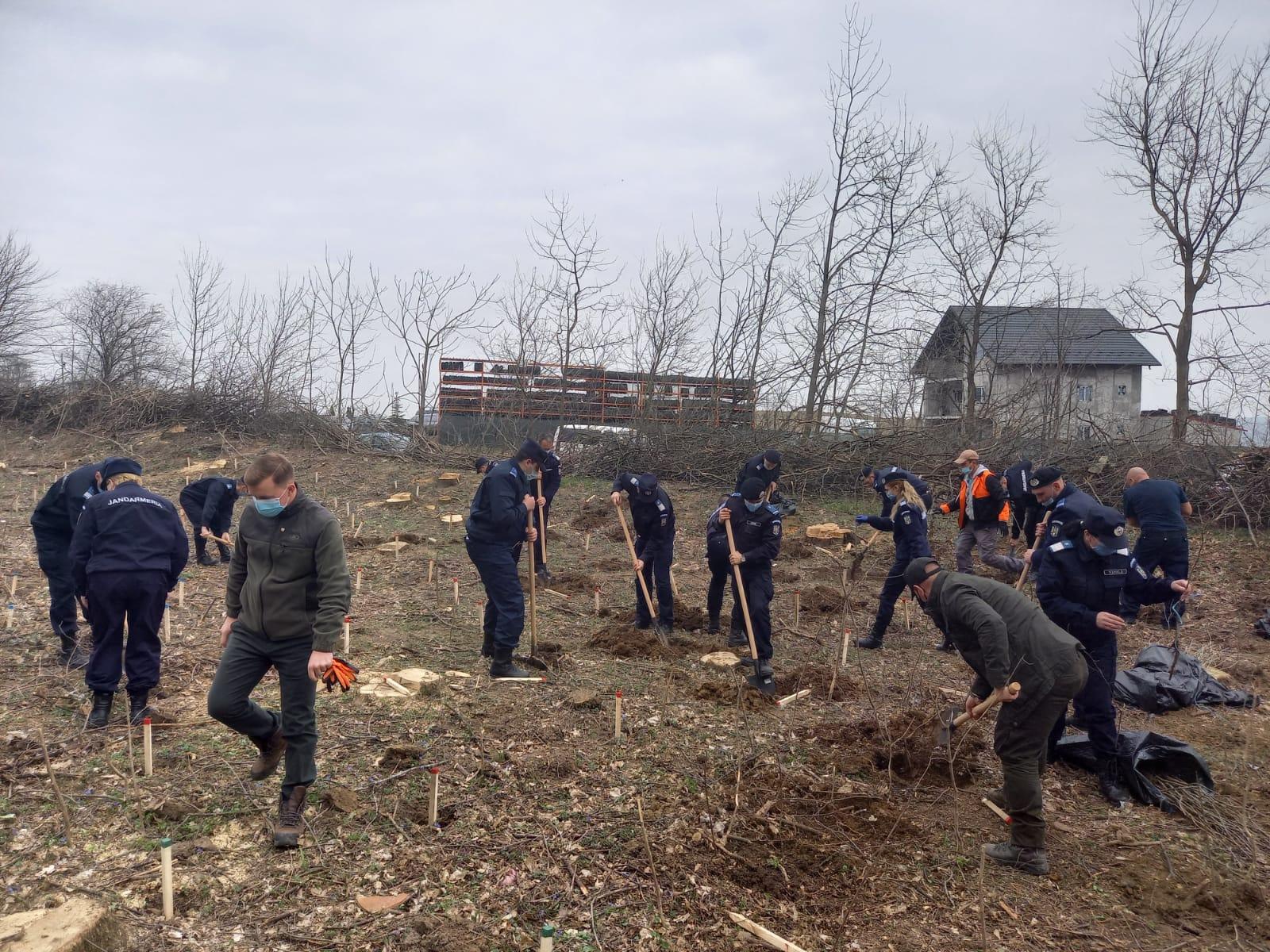 171 de stejari pentru România