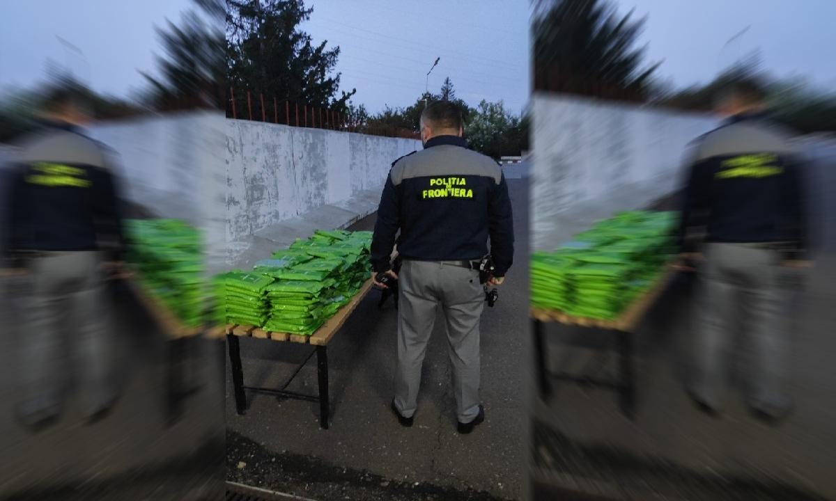 FOTO/ 240 de kilograme de tutun aromatizat, descoperite la Stânca