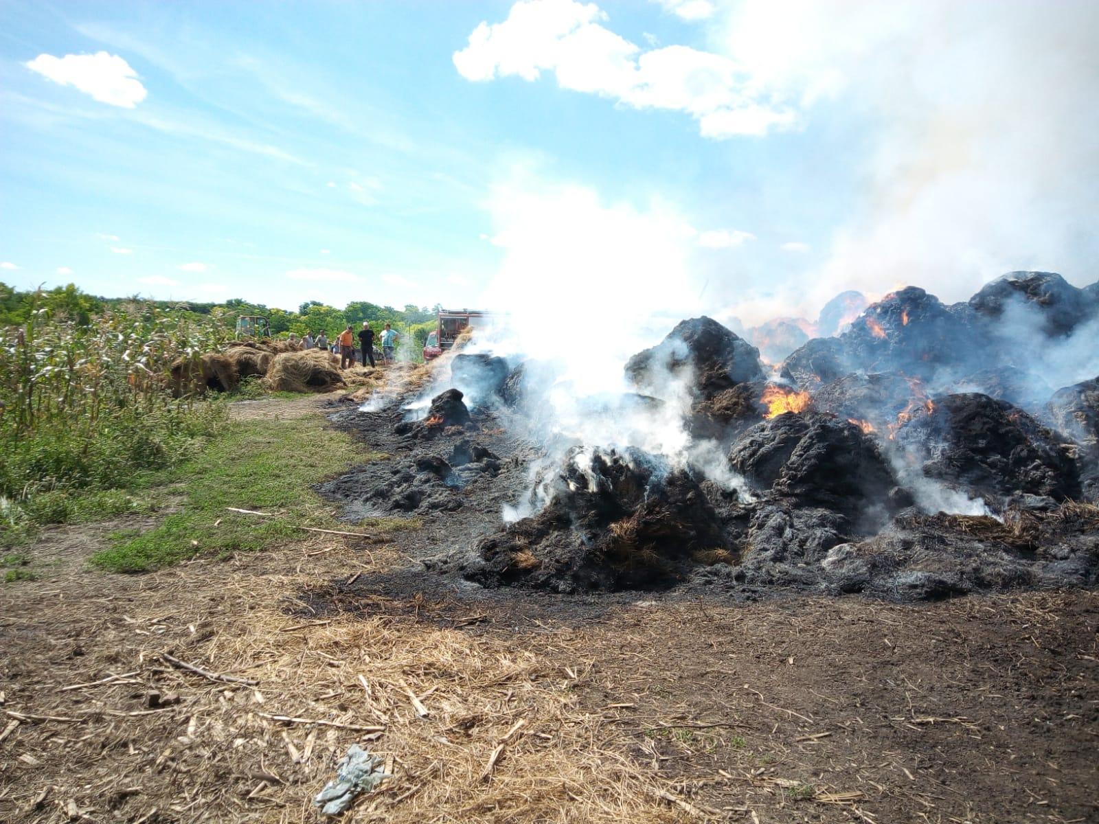 VIDEO/FOTO  Incendiu la Adășeni! Peste 200 de baloți de furaje făcuti  scrum