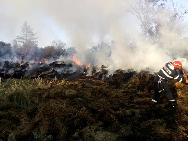 Trei frați din localitatea Sărata au dat foc, din joacă, la depozitul de furaje